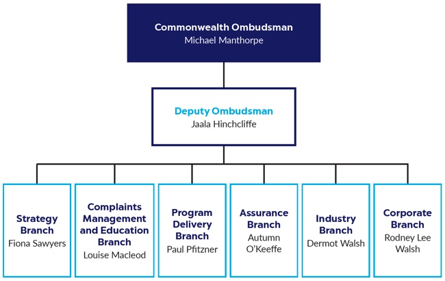 Figure 1 – Executive and senior management structure at 30 June 2018